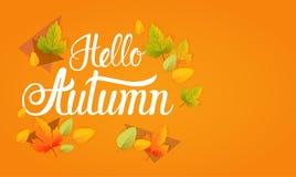 Hallo Autumn Yellow Leaf Fall Banner-Zusammenfassungs-Hintergrund Stockfotografie