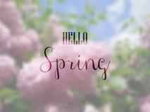 Hallo Frühling Stockbild