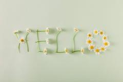 Hallo Frühling Stockbilder