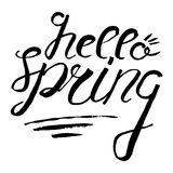 Hallo Frühlingsbeschriftung Ausweis und Karte für Feier Frühling b Stockfotos