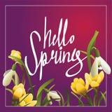 Hallo Frühlingsbeschriftungspostkarte oder Quadratfahne Lizenzfreie Stockbilder