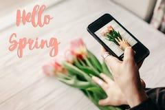 Hallo Frühlingstextzeichen, Hand, die das Telefon macht Foto von Griffeln hält Lizenzfreie Stockfotos