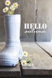 Hallo Herbst, Gänseblümchen und Stiefel auf einer alten Weinlesetabelle Lizenzfreie Stockfotografie