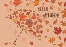 Hallo Herbst! Regenschirm bestanden aus Farbherbstlaub Stockfotos