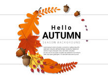 Hallo Herbsthintergrund mit dekorativem Kranz auf hölzernem Brett Lizenzfreie Stockfotografie