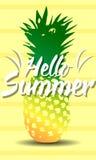 Hallo Hot Summer. On nice background Stock Photography
