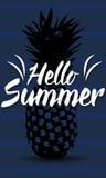Hallo Hot Summer. On nice background Royalty Free Stock Photo