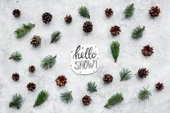 Hallo Schneehandbeschriftung Wintermuster mit Fichtenzweig und Kegel auf Draufsicht des grauen Hintergrundes Stockfotografie
