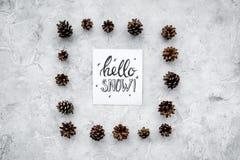 Hallo Schneehandbeschriftung Wintermuster mit pinecones auf Draufsicht des grauen Hintergrundes Stockbilder
