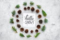 Hallo Schneehandbeschriftung Wintermuster mit pinecones und Fichtenzweig auf Draufsicht des grauen Hintergrundes Lizenzfreie Stockfotografie