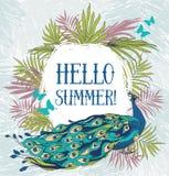 Hallo Sommer! Fahne mit schönem Pfau vektor abbildung