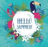 Hallo Sommer! Fahne mit tropischen Vögeln lizenzfreie abbildung