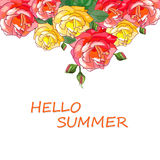 Hallo Sommer rosen Lizenzfreie Stockbilder