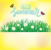 Hallo Sommer, Schmetterlingsfliegen über dem Gras mit Blumen, Frühling Stockfoto