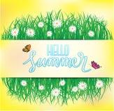 Hallo Sommer, Schmetterlingsfliegen über dem Gras mit Blumen, Frühling Stockfotos