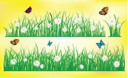 Hallo Sommer, Schmetterlingsfliegen über dem Gras mit Blumen, Frühling Stockbild