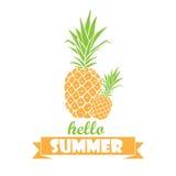 Hallo Sommer - Typografieplakat mit Hand gezeichneten Ananas Stockfoto
