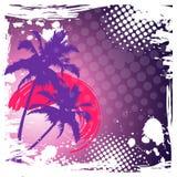 Hallo Sommerbeschriftung PALME-STEIGUNGS-SONNENUNTERGANG Tropischer Paradieshintergrund Stockbild