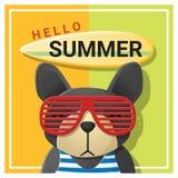 Hallo Sommerhintergrund mit Hundetragender Sonnenbrille Lizenzfreie Stockfotos