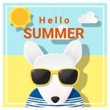 Hallo Sommerhintergrund mit Hundetragender Sonnenbrille Stockbild