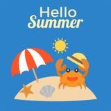 Hallo Sommertypographie für Gebrauch als Plakat oder Grußkarte mit Krabbe Lizenzfreie Stockbilder
