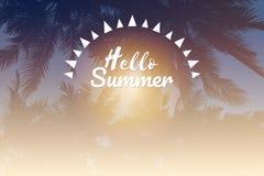 Hallo Sommerwörter auf Schattenbild des Kokosnussbaums Stockbild