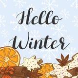 Hallo Winter Illustration mit Plätzchen, Zitrusfrucht und Gewürzen vektor abbildung