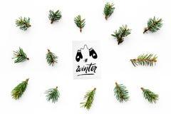 Hallo Winterhandbeschriftung mit Handschuhikone Wintermuster mit Fichtenzweigen auf Draufsicht des weißen Hintergrundes Lizenzfreie Stockbilder