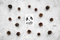 Hallo Winterhandbeschriftung mit Handschuhikone Wintermuster mit pinecones auf Draufsicht des grauen Hintergrundes Lizenzfreies Stockfoto