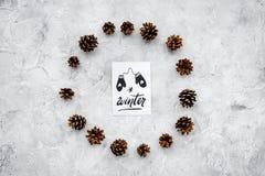 Hallo Winterhandbeschriftung mit Handschuhikone Wintermuster mit pinecones auf Draufsicht des grauen Hintergrundes Lizenzfreie Stockfotografie