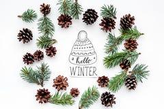 Hallo Winterhandbeschriftung mit Hut Wintermuster mit Fichtenzweig und Kegel auf Draufsicht des weißen Hintergrundes Stockfotografie