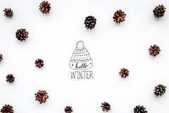Hallo Winterhandbeschriftung mit Hut Wintermuster mit pinecones auf Draufsicht des weißen Hintergrundes Lizenzfreies Stockfoto