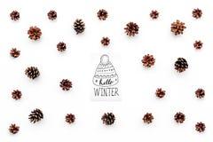 Hallo Winterhandbeschriftung mit Hutikone Wintermuster mit Kiefernkegeln auf Draufsicht des weißen Hintergrundes Stockfotografie