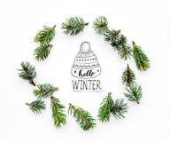 Hallo Winterhandbeschriftung Wintermuster mit Fichtenzweigen auf weißem Draufsichtmuster des Hintergrundes Stockfoto