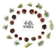 Hallo Winterhandbeschriftung Wintermuster mit Fichtenzweigen und pinecones auf Draufsicht des weißen Hintergrundes Lizenzfreie Stockfotografie