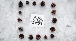 Hallo Winterhandbeschriftung Wintermuster mit pinecones auf Draufsicht des grauen Hintergrundes Stockfoto