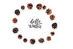 Hallo Winterhandbeschriftung Wintermuster mit pinecones auf Draufsicht des weißen Hintergrundes Stockbilder