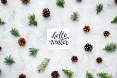 Hallo Winterhandbeschriftung Wintermuster mit pinecones und Fichtenzweig auf Draufsicht des grauen Hintergrundes Lizenzfreies Stockfoto