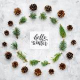 Hallo Winterhandbeschriftung Wintermuster mit pinecones und Fichtenzweig auf Draufsicht des grauen Hintergrundes Stockfotos