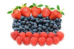 Hallon, blåbär och jordgubbar Arkivbild