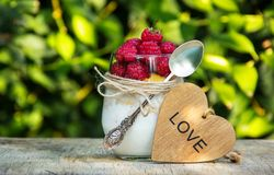 Hallon, hemlagad yoghurt och mysli Romantisk frukost för användbar frukost Royaltyfri Bild