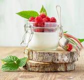 Hallon och yoghurt arkivfoton