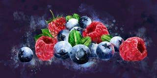 Hallon, tranbär och blåbär på mörk bakgrund royaltyfri illustrationer