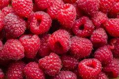 Hallonfruktslut upp bakgrund Toppen mat med vitaminer och antioxidants Storen specificerar! Royaltyfri Fotografi