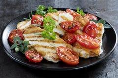 Halloumi乳酪用烤西红柿和草本 免版税库存图片