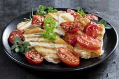 Halloumi Cheese with Roasted Cherry Tomatoes and Herbs. Halloumi cheese, grilled, with roasted cherry tomates and herbs Royalty Free Stock Image