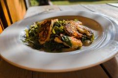 Halloumi Salad Stock Image