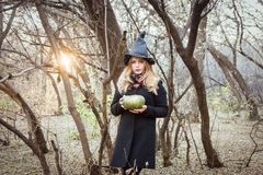 Hallow-positive, cute photo. beautiful. Witch and a green witch pumpkin in a forest covered with sun rays Stock Images