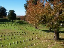 Hallowed Ground. An image of part of Vicksburg National Military Park Stock Image
