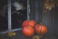Halloween' pumpkins in the full moon light in a dark room. Bright orange pumpkins in a dark room on an old wooden table. Full moon outside the window Stock Photos